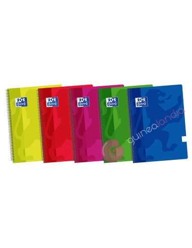 Cuaderno A4 80 hojas Liso Tapa...