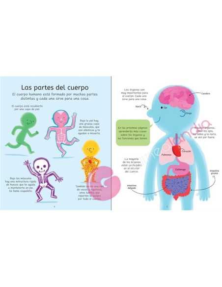 Libro Puzzle El Cuerpo Humano 100 pzs
