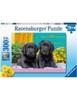 Puzzle Vida de Perros 300 piezas